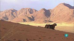 Grans documentals - Velocitat mortal 2: El desert