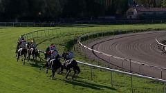 Hípica - Circuito nacional de carreras de caballos