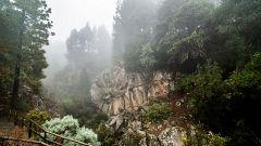 Precipitaciones localmente fuertes o persistentes en el oeste de Canarias