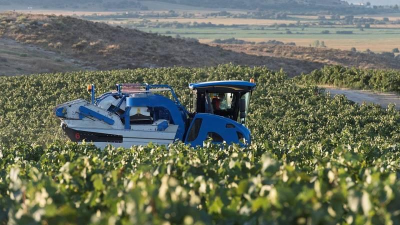 La agricultura, en el punto de mira de los fondos de inversión