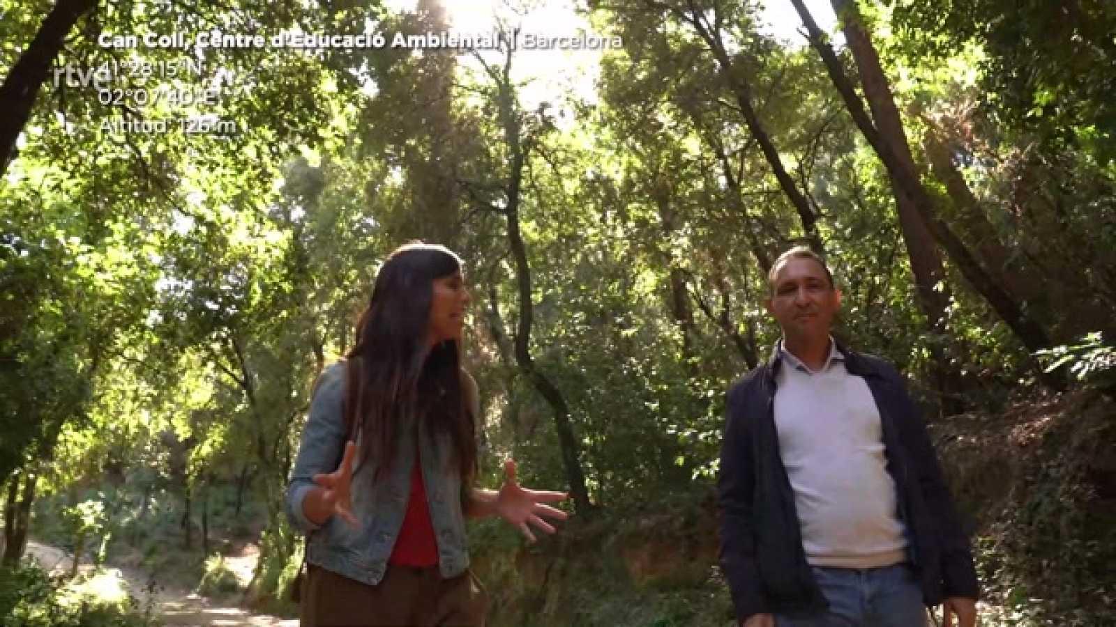 ¡QUÉ ANIMAL!  entrevista al biólogo Miguel Pérez Enciso