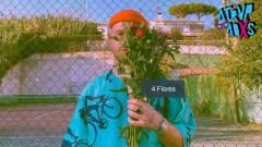 Atrvpadxs - Sr. Wilson y sus 4 Flores - 14/12/2020