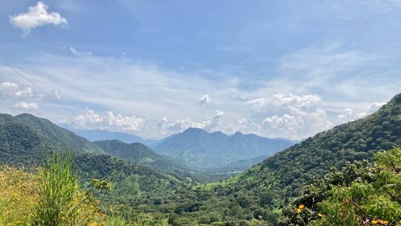 Desplazamientos en Guerrero forzados por la violencia