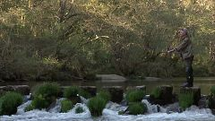 Jara y sedal - Historias de un río