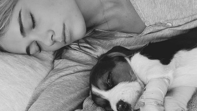 Corazón - Enrique Ponce y Ana Soria, muy preocupados por su perrito Ney