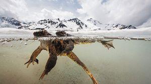 El santuario: Sobreviviendo en los Alpes, episodio 2