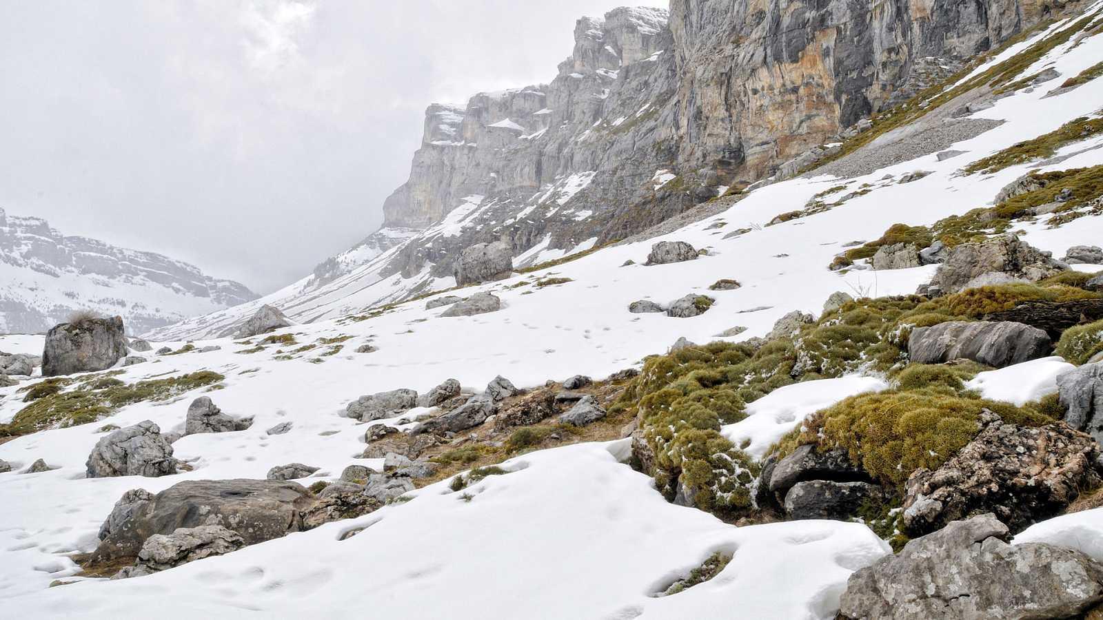 Nevadas por encima de 600/1000 m en zonas de la mitad norte peninsular - ver ahora
