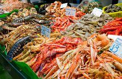 Aquí la Tierra - Aprendemos a diferenciar crustáceos, ¿qué peculiaridades tienen?