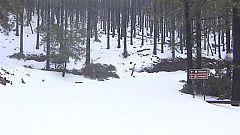 Canarias en 2' - 09/01/2021
