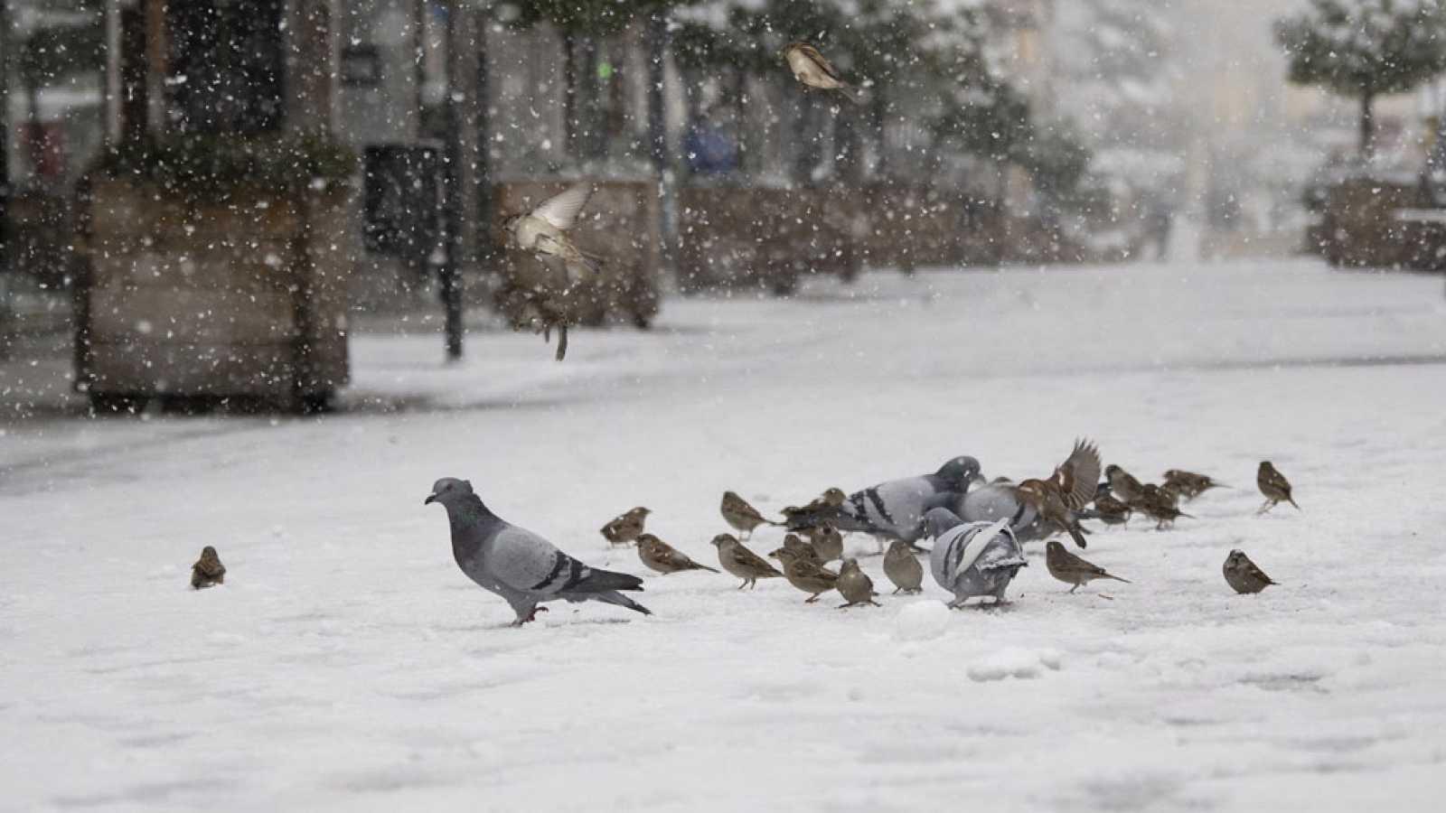 Tras Filomena, una ola de frío afectará a la península