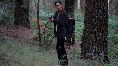'La caza. Monteperdido', resumen de la temporada