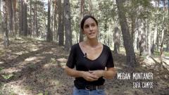 Megan Montaner habla del pasado de Sara Campos en 'La caza. Tramuntana'