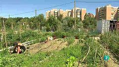 La aventura del saber - Ciudades por la agroecología