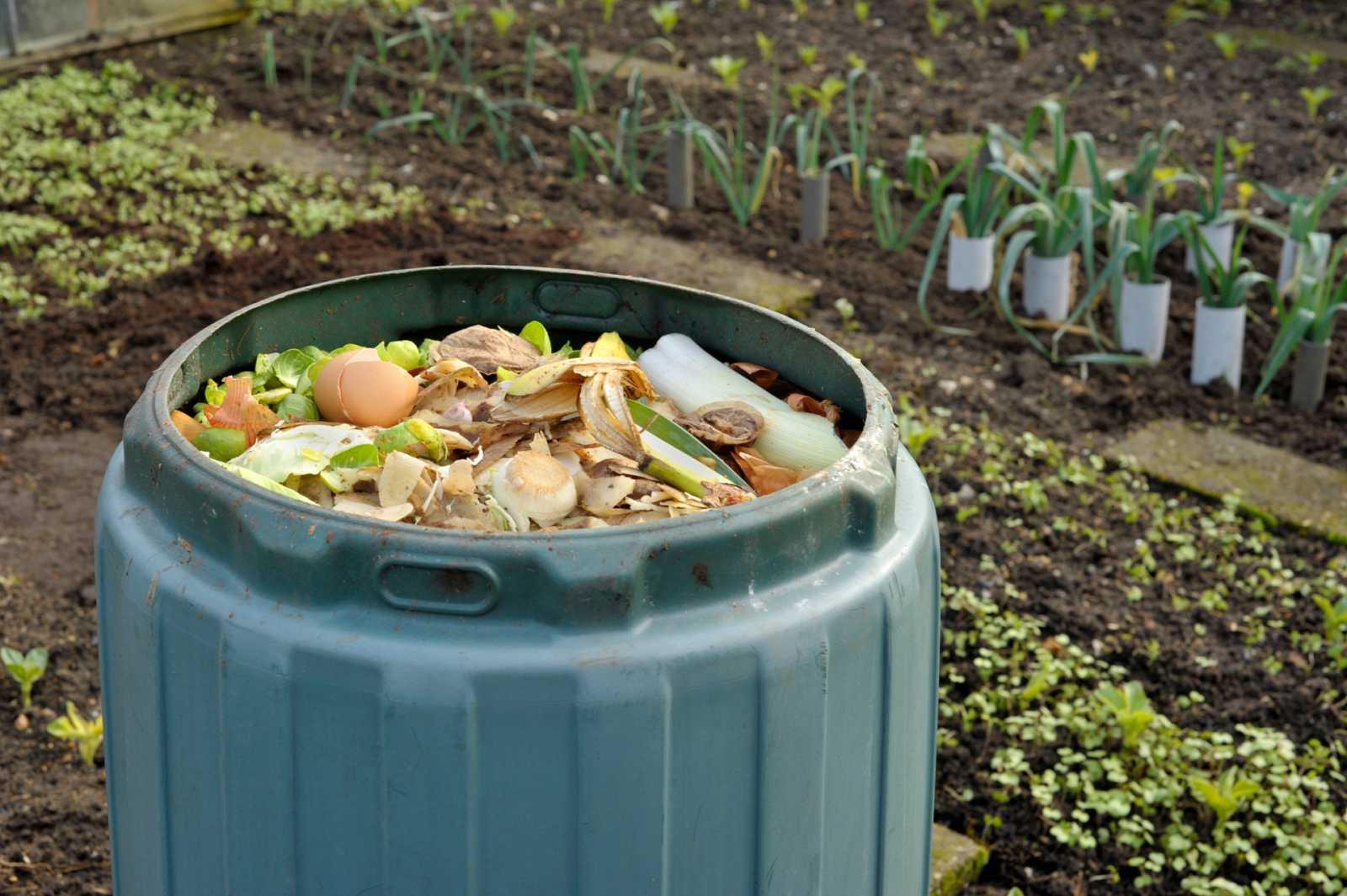 Aquí la Tierra - ¿Cómo se elabora el compost en Alcorcón?