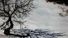 Viento, oleaje, nieve, deshielo y lluvia ponen  en riesgo a 42 provincias y Melilla