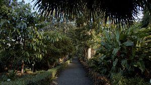 Tenerife: Jardín de aclimatación de La Orotava