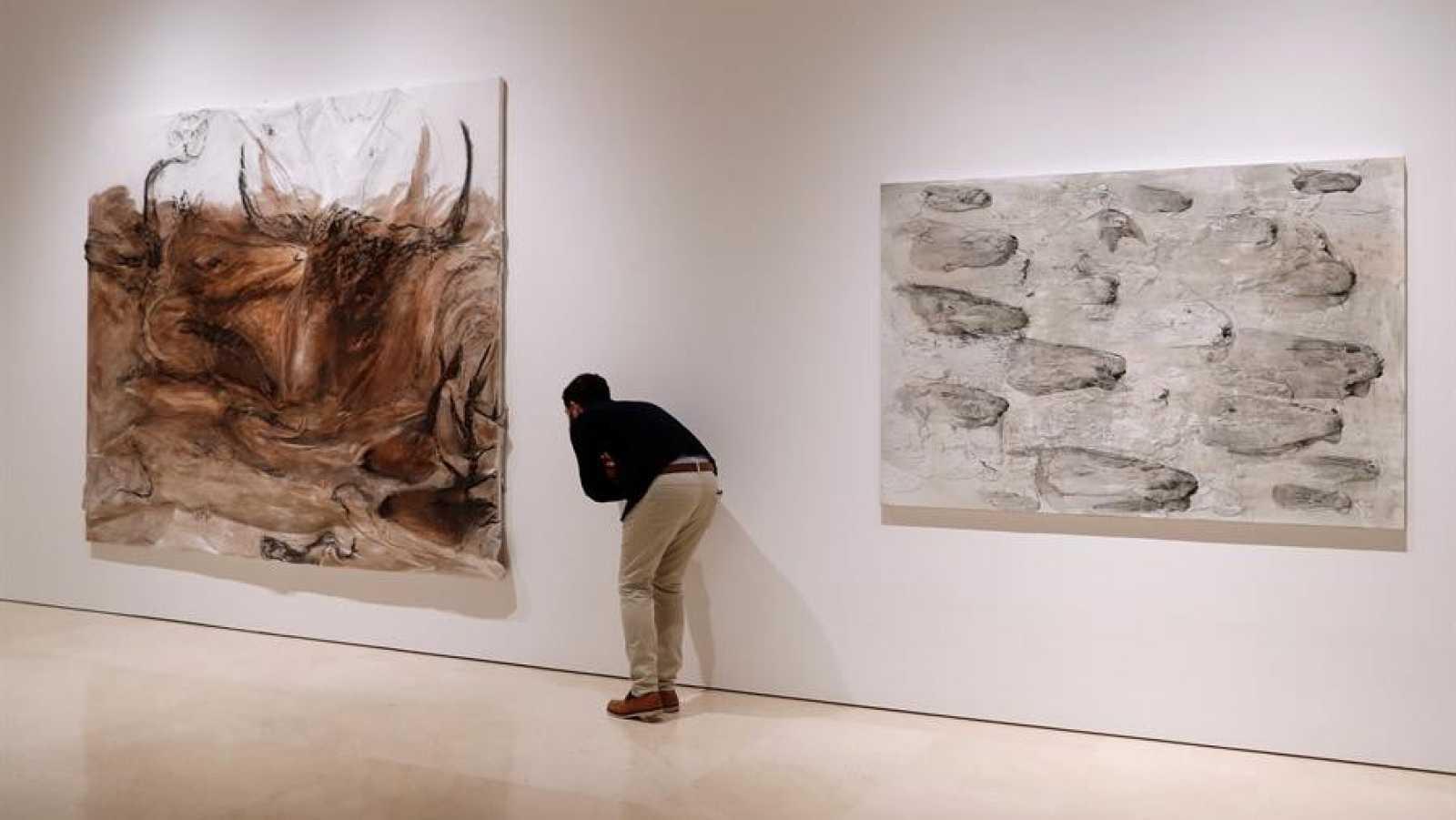 Miquel Barceló lleva su 'Metamorfosis' al Museo Picasso de Málaga