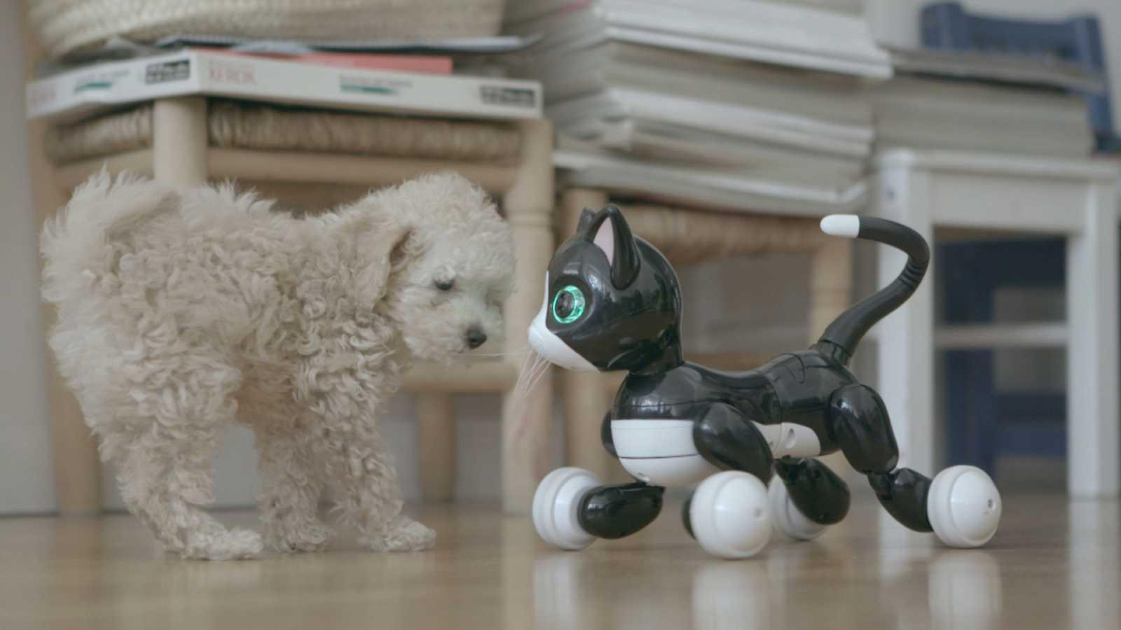 Otros documentales - Inteligencia Artificial (Versión Original) - Ver ahora