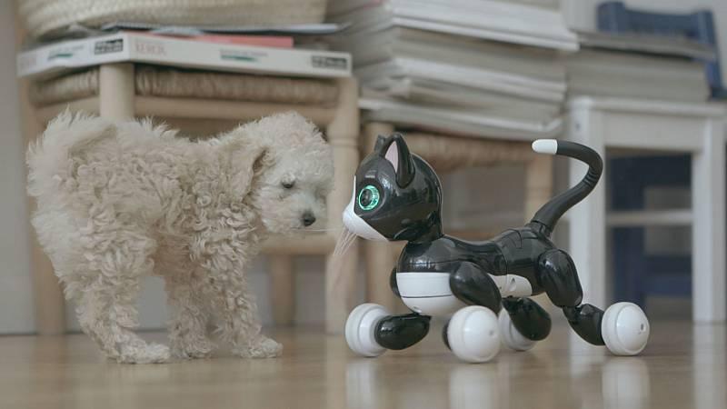 Otros documentales - Inteligencia Artificial - ver ahora