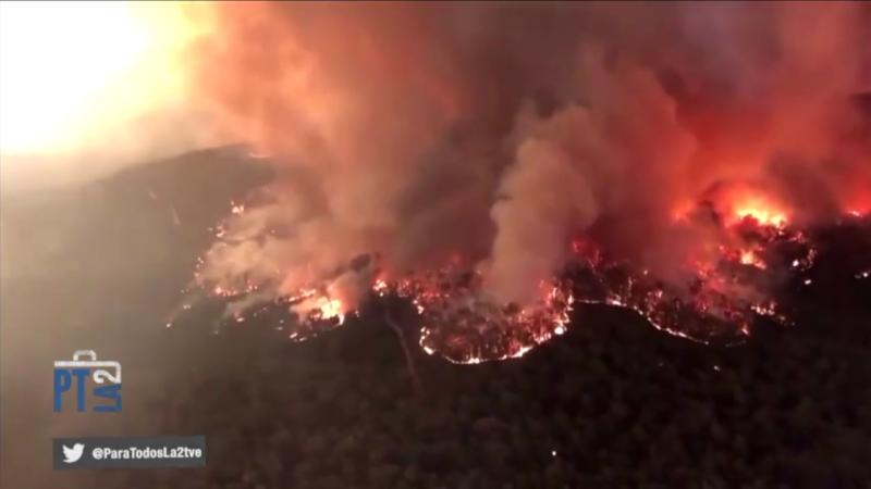 Los incendios forestales y el cambio climático