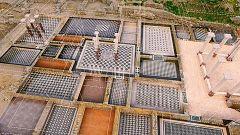 Ingeniería romana - Las ciudades II. Las semillas del Imperio