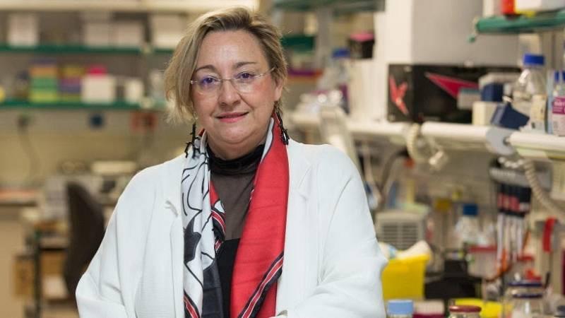 """Ángela Nieto (CSIC): """"El número de mujeres disminuye en los puestos de responsabilidad en la Ciencia"""""""