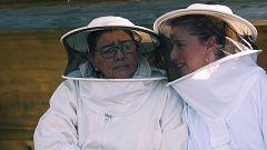 Dos parejas y un destino - Anne y María se tumban en la cama de abejas