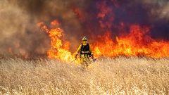 España Directo - Palos de la Frontera arde