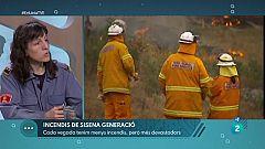 En Línia - Incendis i zones desforestades