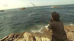 Jara y sedal - Con la mirada puesta en el mar