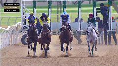 Hípica - Circuito nacional de carreras de caballos. Desde el hipódromo de Pineda (Sevilla)