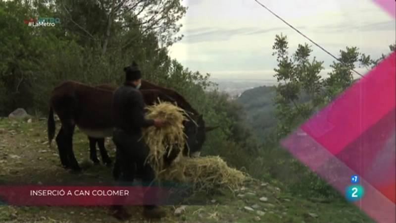 Inserció a Can Colomer, Circ social i Repartiment sostenible a La Metro