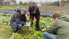 Aquí la Tierra - La primera clase de horticultura de Ramón Arangüena