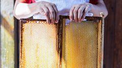 Aquí la Tierra - Así se elaboran las colmenas artificiales