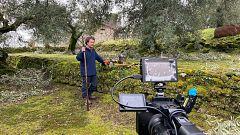 Aquí la Tierra - Remondamos y estalleramos olivos en Ávila