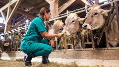 Emprender en el ámbito rural, un reto para muchas mujeres