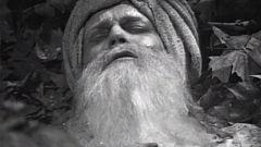 A través de la niebla - El parpadeo de Vishnu
