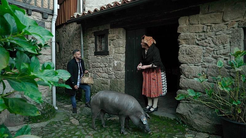Las rutas d'Ambrosio - Salamanca, truco o trato - ver ahora