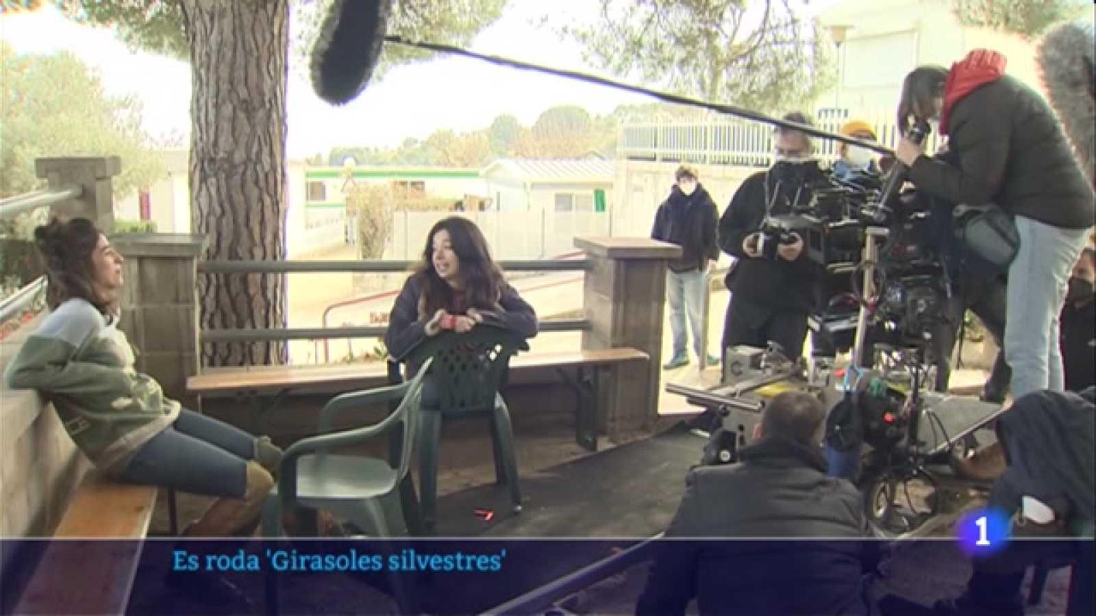 Jaime Rosales roda la seva nova pel·lícula 'Girasoles silvestres'