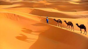 Nacido explorador: Marruecos, los últimos nómadas