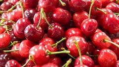 Grandes documentales - Jerte, vida salvaje en el valle de los cerezos