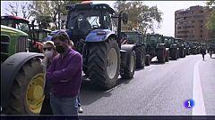 Tractorada en defensa del sector del arroz