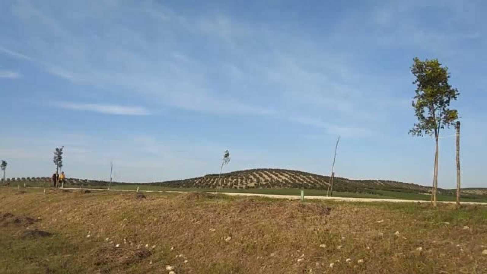 En primera persona - Vídeo de El Taller Verde - 04/04/21 - Escuchar ahora