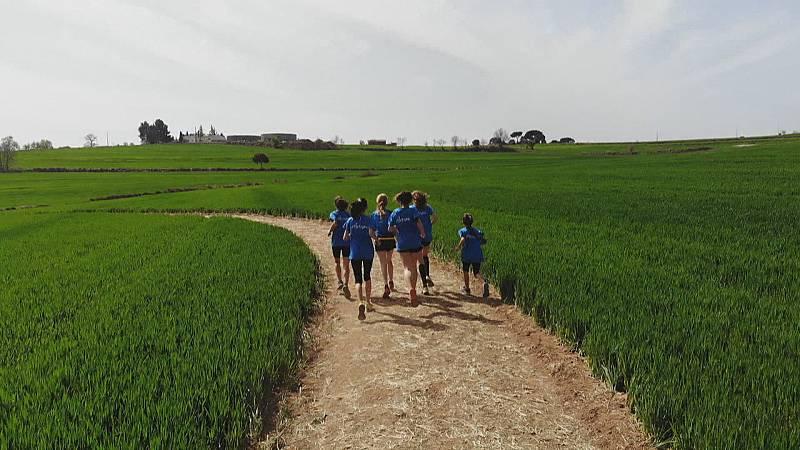 Una pista de atletismo en pleno trigal en Caserras (Barcelona), inspirada en Kenia