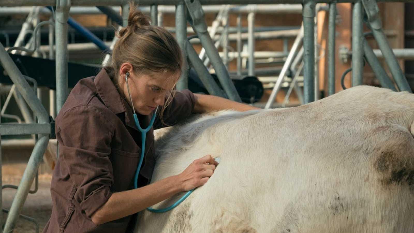 'Una veterinaria en Borgoña' llega a los cines españoles tras triunfar en Francia
