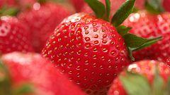 Las frutas de temporada en primavera