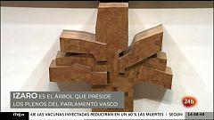 Parlamento - Otros parlamentos - Izaro, el arbol que preside los plenos del Parlamento Vasco - 10/04/202