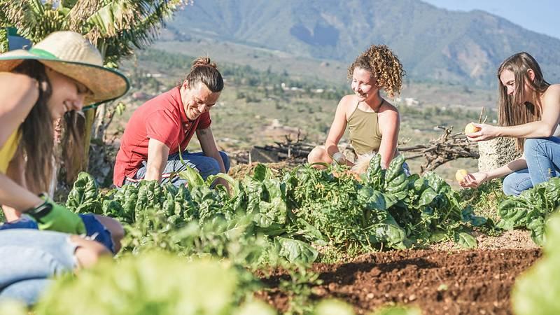 España Directo - Erasmus rural, la nueva tendencia entre los estudiantes