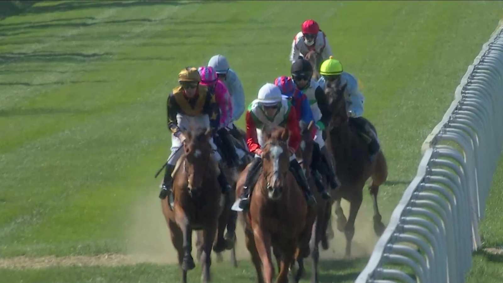 Hípica - Circuito nacional de carreras de caballos desde el hipódromo de La Zarzuela - ver ahora