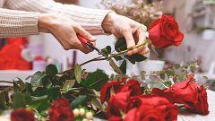España Directo - El Mercado de la Flor distribuye 4 millones de rosas en Barcelona